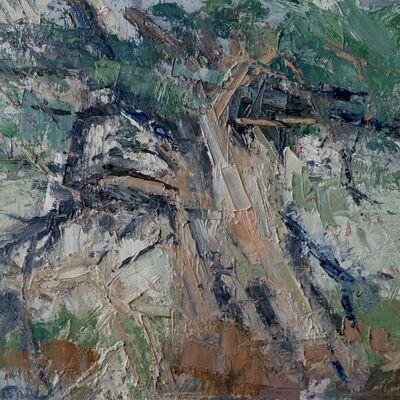 Borrowdale Yews Study