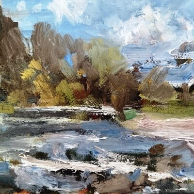 River Study 2