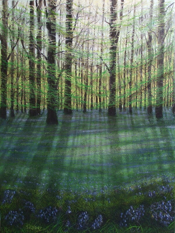 Bluebell Wood no3