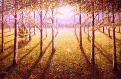 Evening Wood Sun