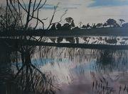 Blythe Floods