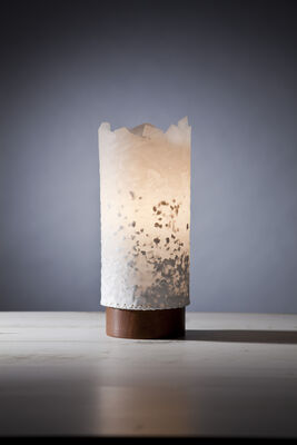 natural edge table lamp 4