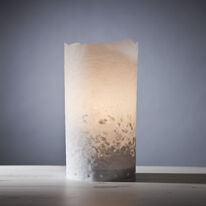 stand alone natural edge table lamp