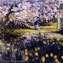 Magnolia, Ruskin Park