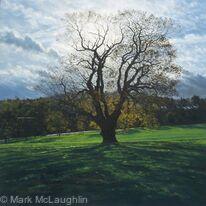Autumn Oak, Brockwell Park.