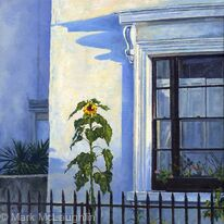 Sunflower, southwell road