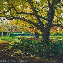 Autumn light, Ruskin Park