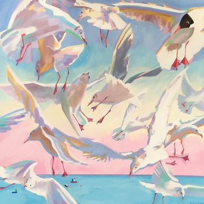 East Coast Seagulls