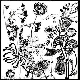 Hedgerow Flowers Frieze 2