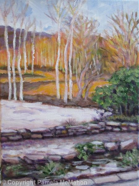 Silver Birches and Golden Light