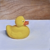 A Duck is Forever Not Just For Christmas