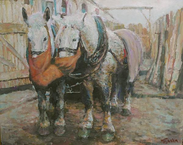 horses working krakow