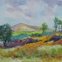 Breezy Day Dartmoor
