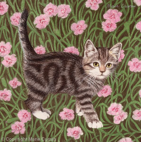Tabby cat with carnations