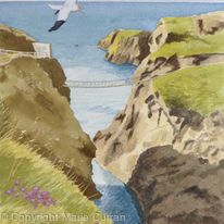 Gannets over Carrick-a-Rede