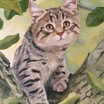 Tigger in the tree