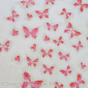 Butterfly flurry