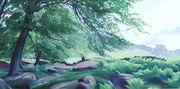 102 Beech Wood - Stanage Edge