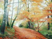 509 Woodland - Autumn 1 Gillfield Woods, Totley