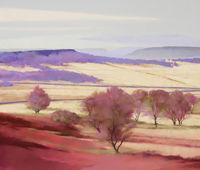 1270 Birchen Edge, Eastern Moors