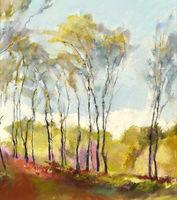 1303 Birches, Stanton Moor