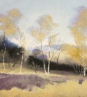 1308 Autumn, Birchen Edge