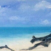 Heron Island paradise