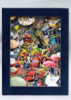 Birds of the World, 1963