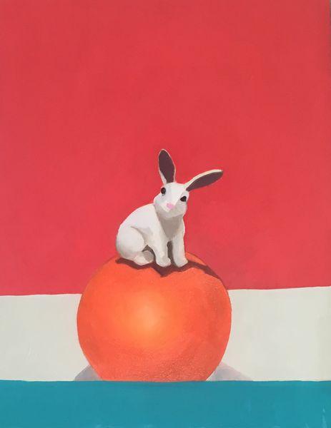 Rabbit on Orange Ball
