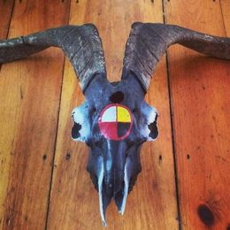 Medicine Wheel Painted Goat Skull