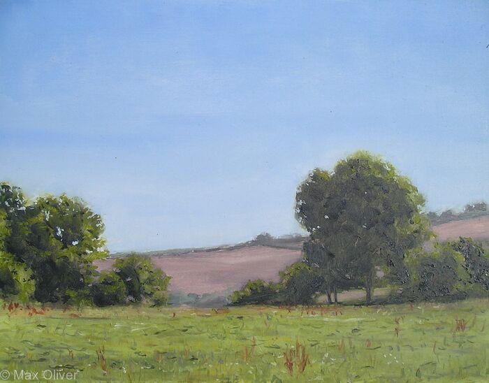 Rosenun Field Summer