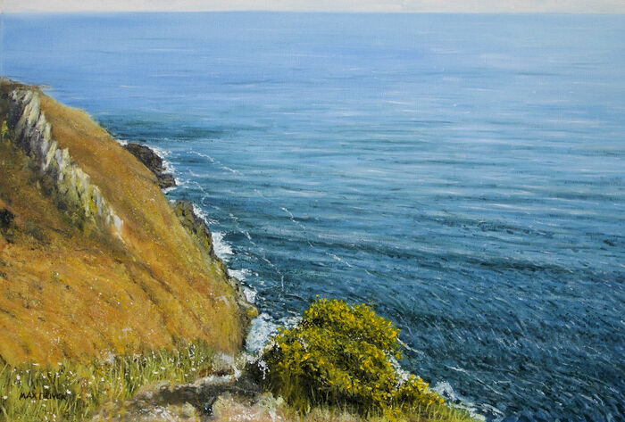 Clifftop Gorse