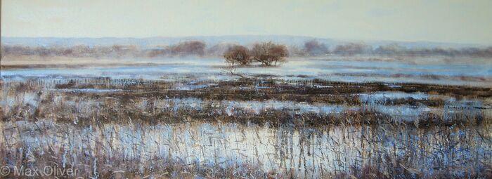 Wareham Water Meadow II