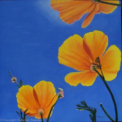 Poppy Canopy