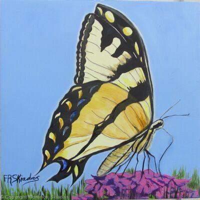 Chasing Tiger Swallowtail