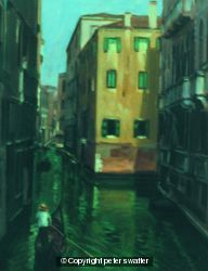 shady green water canal - venice