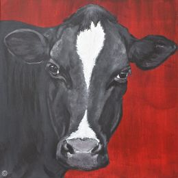 Cow 2711