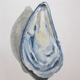Mussel Shell 1
