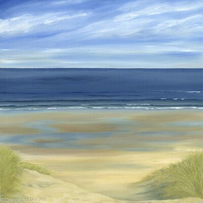 Northumberland Dunes