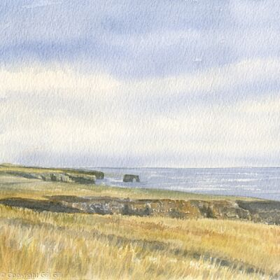 View to Souter Lighthouse