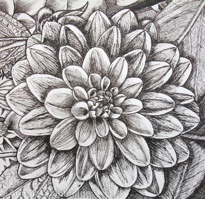 B/W Dahlia Flower 3