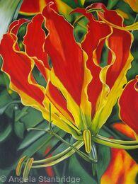 Gloriosa Tulip