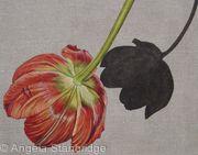 Tulipmania 1 - Linen