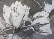 Tulipmania 3 - Pen and Ink - SOLD