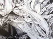 Tulipmania 6 - Pen