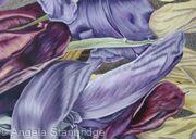 Tulipmania 4 - Colour
