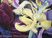 Tulipmania 11 - Colour - SOLD