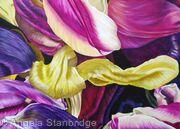Tulipmania 12 - Colour - SOLD