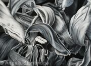 Tulipmania 17 - Black and White