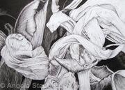 Tulipmania 18 - Pen